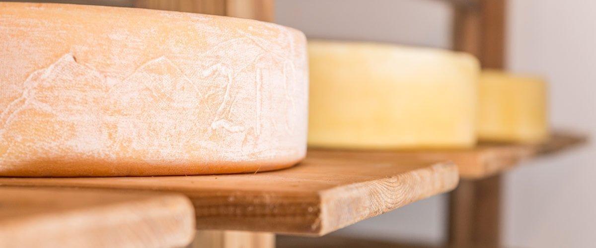 Le varie tipologie di formaggi del caseificio alpino