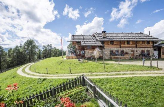 Kreuzwiesenalm in Lüsen - Urlaub in Südtirol (2)