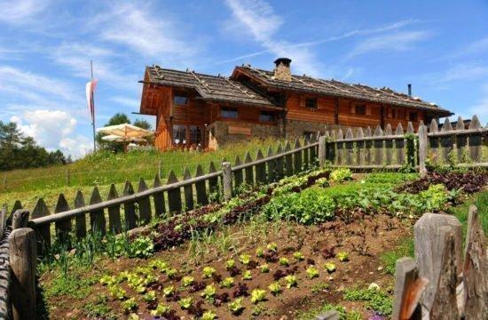 Kreuzwiesenalm in Lüsen - Urlaub in Südtirol (4)