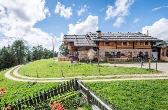 Kreuzwiese mountain hut Luson 25