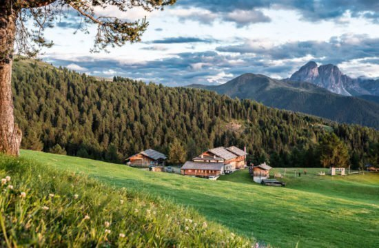Kreuzwiese mountain hut Luson 30
