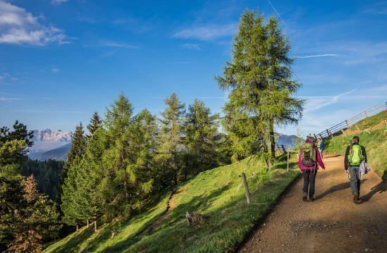 Vacanza escursionistica in Alto Adige 10