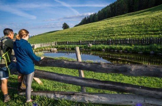 Vacanza escursionistica in Alto Adige 12