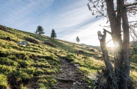 Vacanza escursionistica in Alto Adige 4