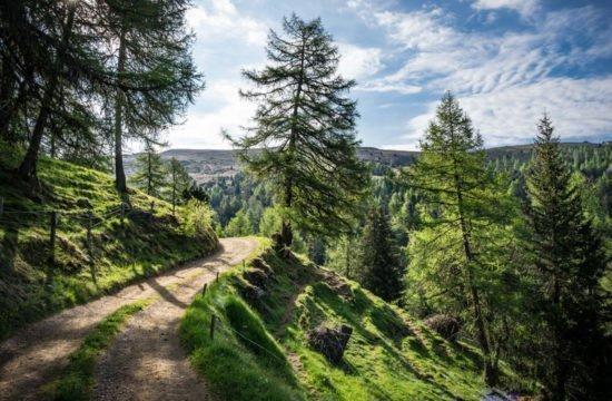 Vacanza escursionistica in Alto Adige 8