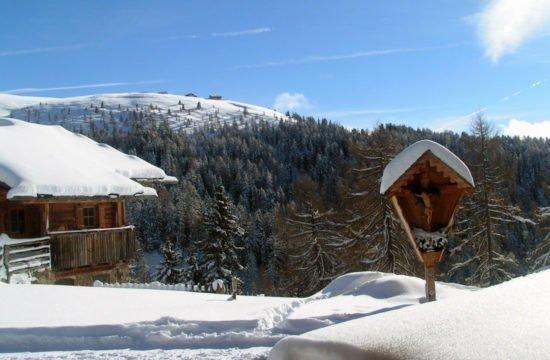 Winter holidays South Tyrol / Kreuzwiese hut 2